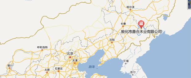 地址:吉林省敦化市城西工业园区   邮编:133700   电话/传真:0433-64